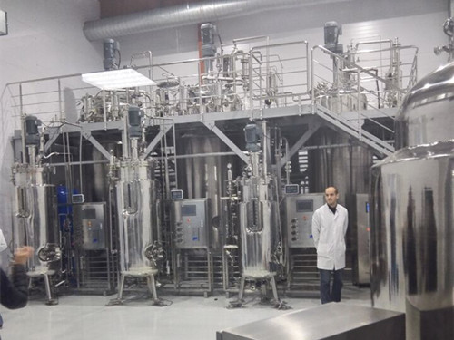 Production Of Type Fermentor Bioreactor Systems 1000l